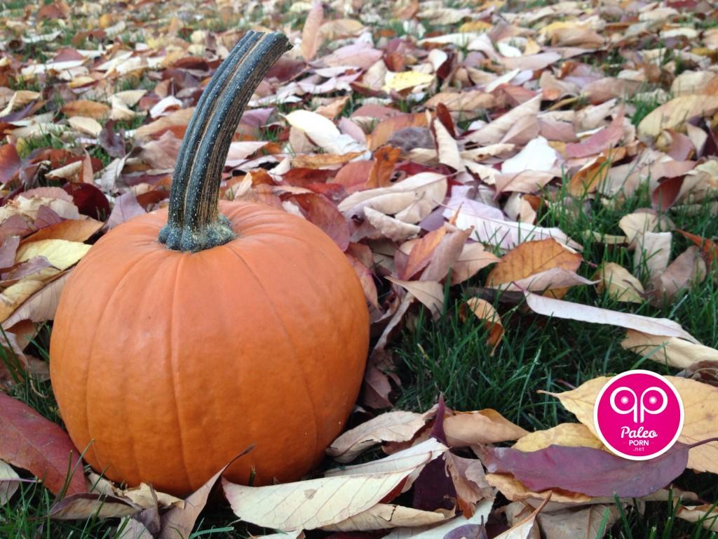Paleo Pumpkin Puree