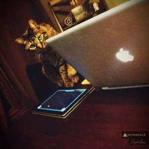 Alpha Playing with a Mouse on the iPad