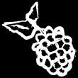 Are Blackberries Paleo?