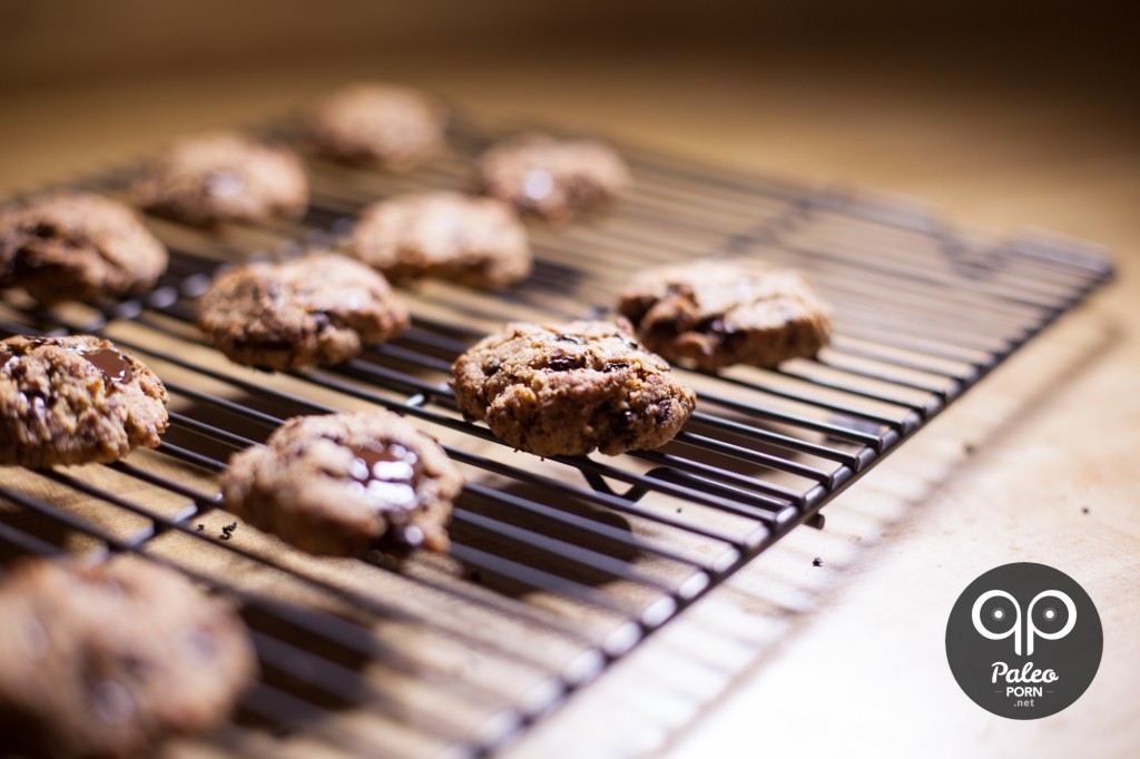 Paleo Cookies Chocolate Chip Egg Free