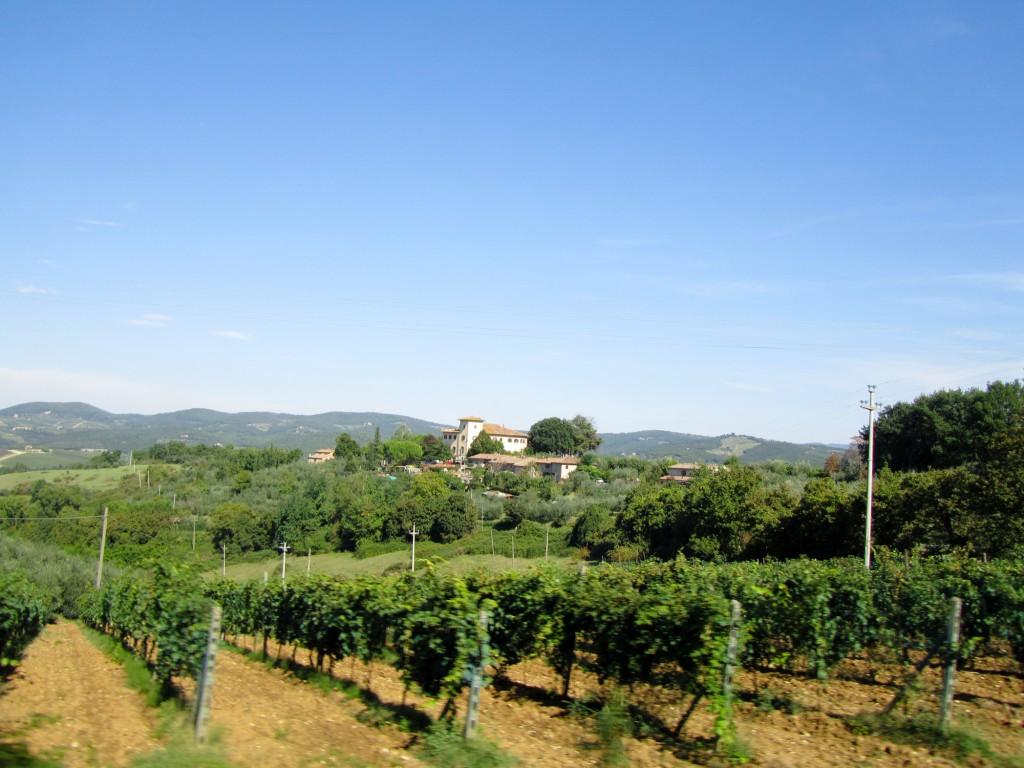 Organic Tuscany Italy