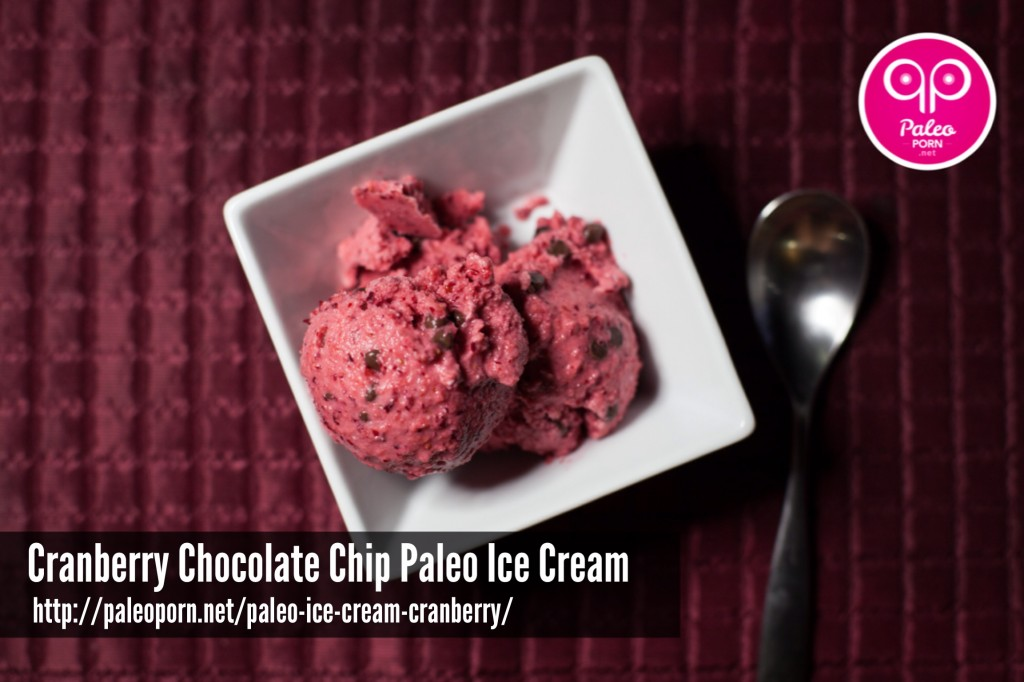 Cranberry Chocolate Chip Paleo Ice Cream