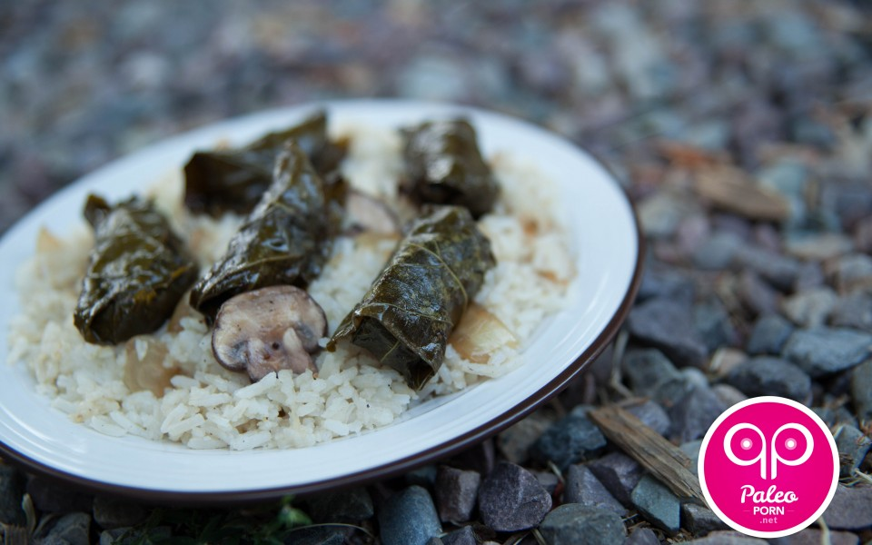Paleo Recipes Ground Beef Paleo Dolmas