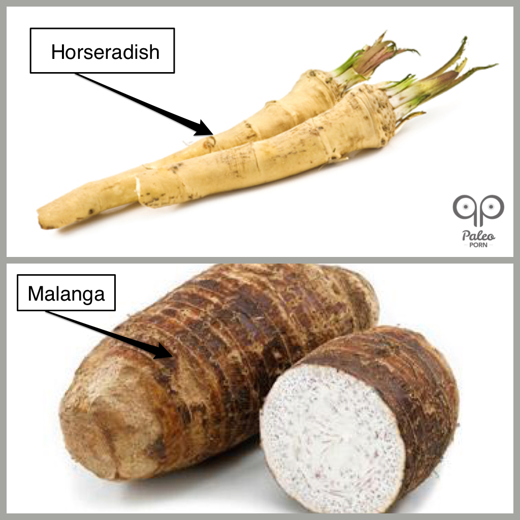 Horseradish versus Malanga Paleo Porn
