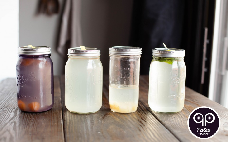 Paleo Recipe How To Make Water Kefir